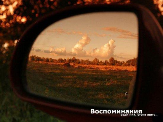 Фото Алексея Ефименкова