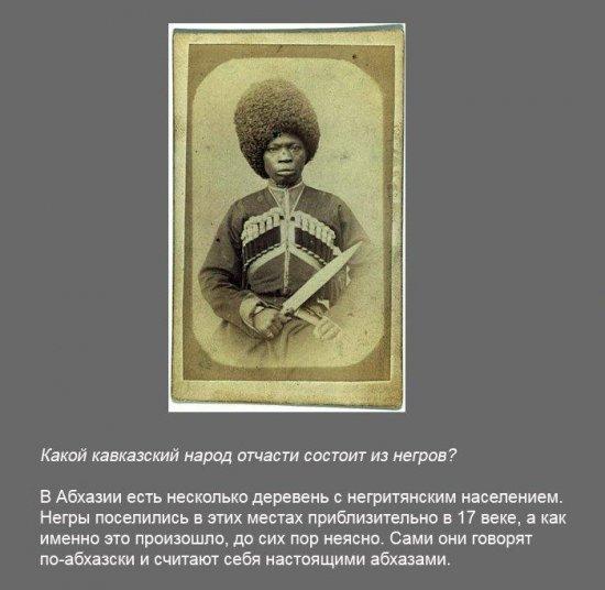 Stimka.ru_1291380089_fakt0340.jpg