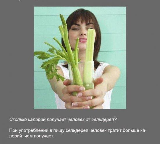 Stimka.ru_1291380114_1.jpg