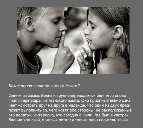 Stimka.ru_1291380123_fakt0060.jpg