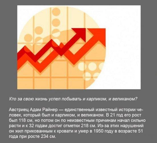 Stimka.ru_1291380163_fakt0140.jpg
