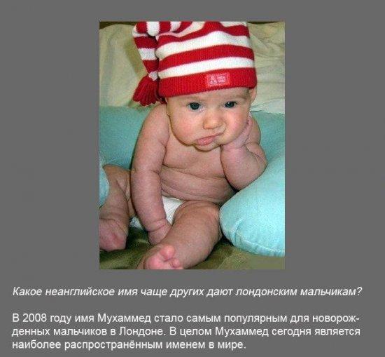 Stimka.ru_1291380170_fakt0010.jpg