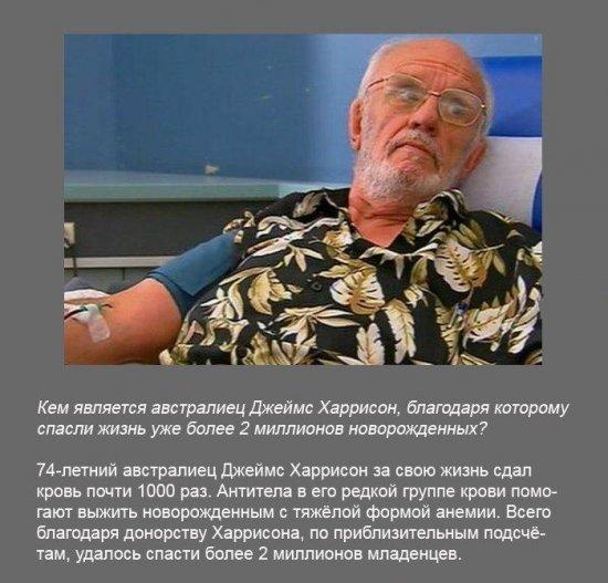 Stimka.ru_1291380179_fakt0040.jpg