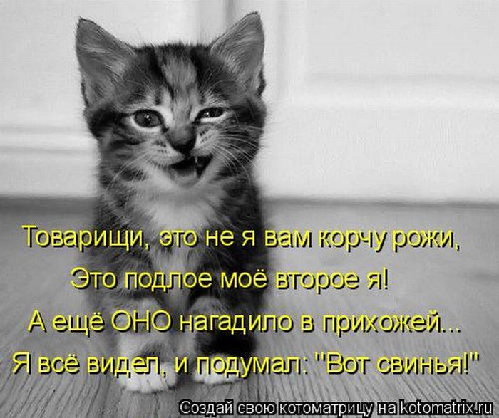Михалков читать с картинками