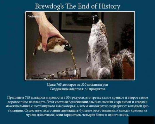 Самое дорогое пиво