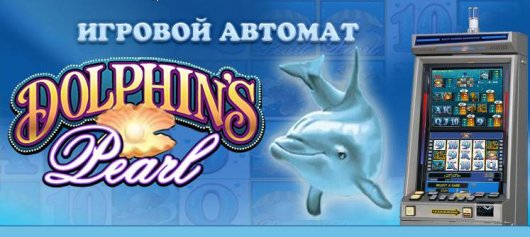 ������� ������� dolphins pearl - ����� ����� ���� ��������!