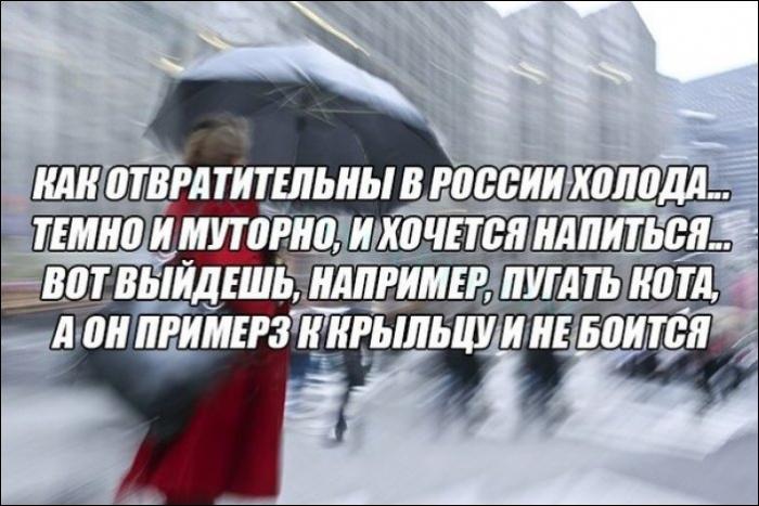 Новости украины канал 1+1 видео