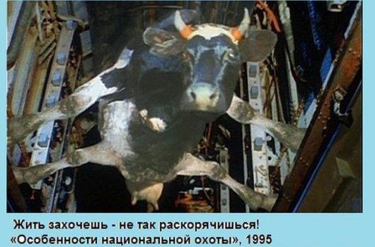 http://stimka.ru/uploads/posts/2013-10/thumbs/stimka.ru_1381403153_1381276480_1-8.jpg