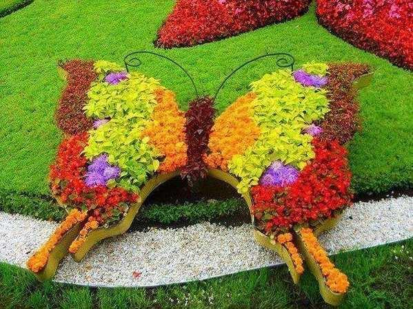 Красивые цветочные клумбы фото
