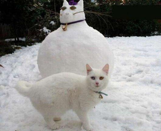 Что можно слепить из снега?